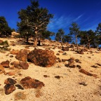 Read Land, Write Walk: Northern Virginia Range, Nevada